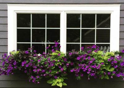 A flowery window is a happy window